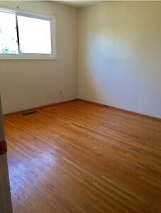 Room for rent $450 include Bed Utilities