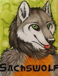 sachswolf