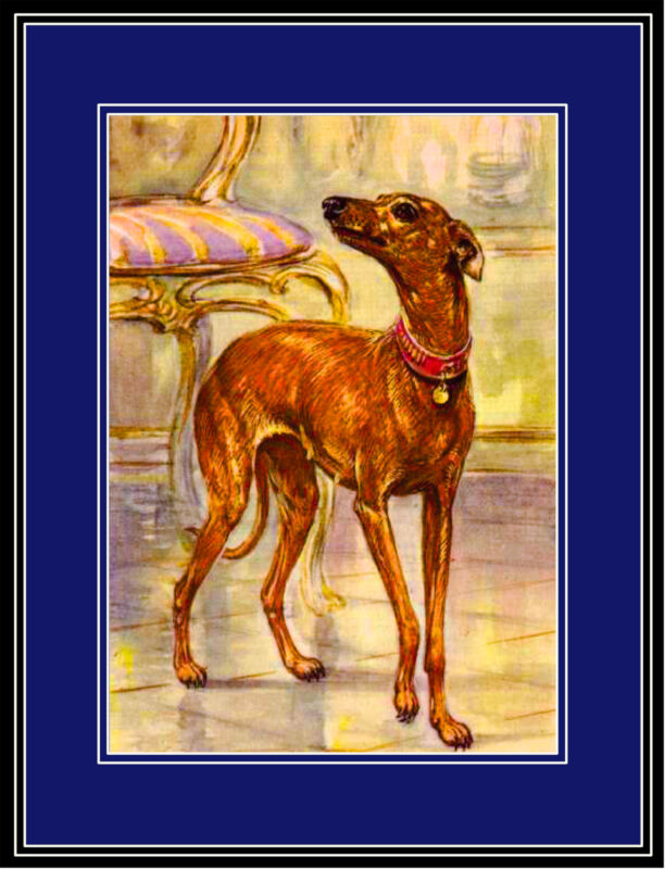 English Print Italian Greyhound Dog Puppy Dogs Puppies Art Vintage Poster