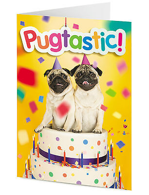 PUGTASTIC! two funny cute pug dogs in a birthday cake – HAPPY BIRTHDAY - Two Funny Dogs