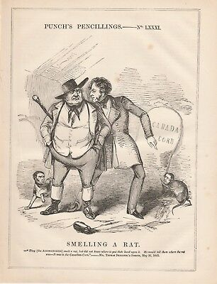 A Cartoon Rat (1843 Punch Cartoon Smelling a Rat in Canada)