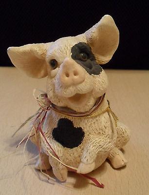 Rarität: geflecktes Schwein mit Riesenohren, aus USA, Schweine, Sau, Ferkel, 1