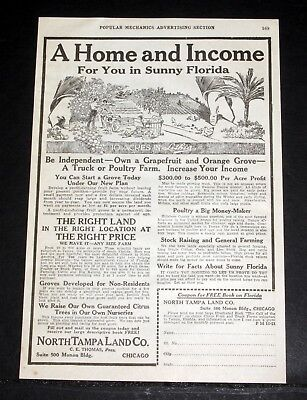 1921 OLD MAGAZINE PRINT AD, NORTH TAMPA LAND CO, HOME, INCOME IN SUNNY FLORIDA! ()