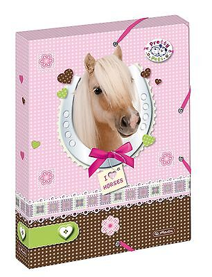 Herlitz Heftbox A4 PP Pretty Pets Pferd file box Heftebox Ablagebox horse
