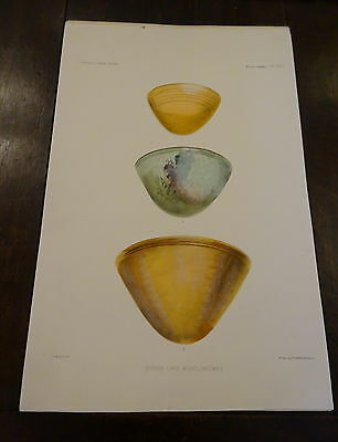Antique Lithograph Froehner Wilhelm 1903 Ancient Glass Archaeology RARE PRINT 3
