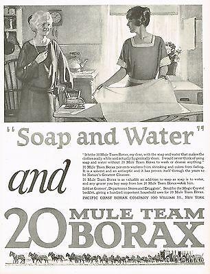 1920's BIG Vintage Borax Laundry Powder Housewife Art Print Ad