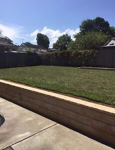Landscaping Quakers Hill Blacktown Area Preview