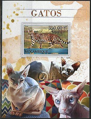 MOZAMBIQUE   2017  CATS  SOUVENIR SHEET MINT NH
