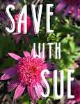 Save with Sue