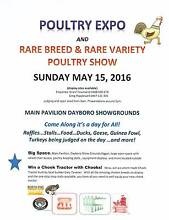 POULTRY EXPO and RARE BREED & RARE VARIETY POULTRY SHOW!! Dayboro Pine Rivers Area Preview