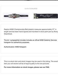 Replique LUTTE WWE BELT SIGNED SIGNÉ ( THE DRAGON)
