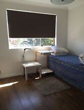 Master & second room for share apartment in Punchbowl Punchbowl 2196 Canterbury Area Preview