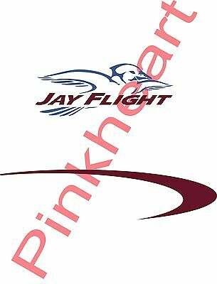 Jay Flight Decal Kit Sticker RV camper trailer jayco rv JAYFLIGHT JAY FEATHER