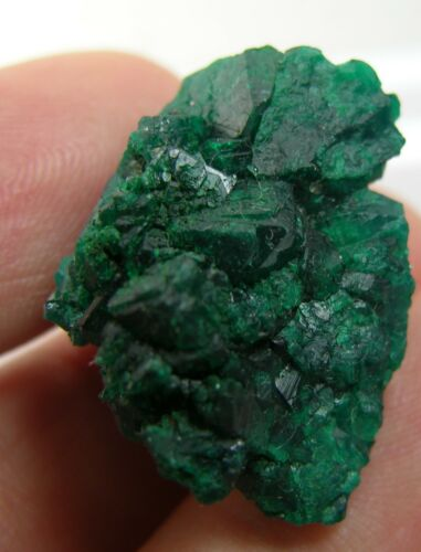 #5 42.75ct Congo Natural Raw Green Dioptase Crystal Cluster Specimen 8.55g 26mm