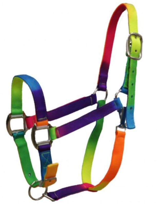 Showman RAINBOW Colored 3 Ply Nylon Horse Size Halter With Adjustable Nose!