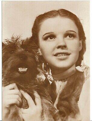 Judy Garland Actress Ludlow sales Postcard 6 x 4   FC-61, usado segunda mano  Embacar hacia Argentina