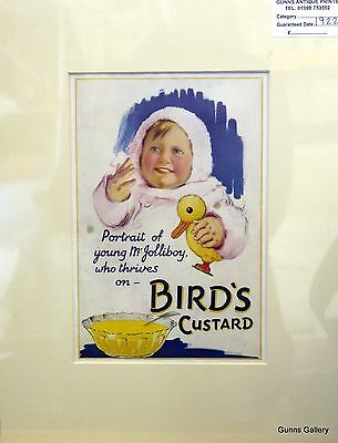 Original Vintage Advertisement mounted ready to frame Birds Custard 1922