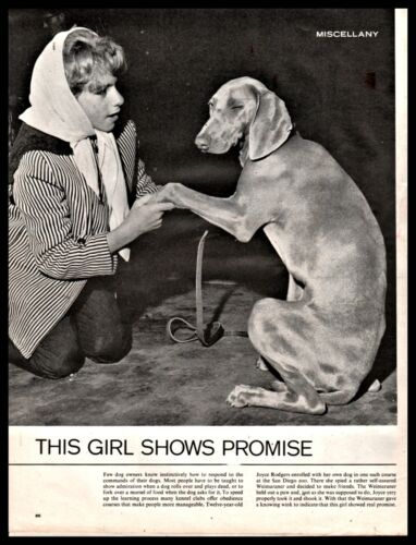 1964 Winking WEIMARANER Photo Page at San Diego Zoo Dog Obedience Class