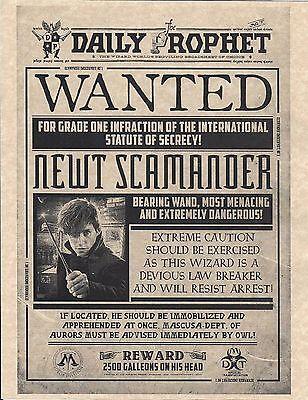 Harry Potter Daily Prophet Wanted Newt Scamander   Fantastic Beasts   Prop Print