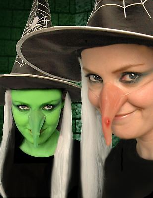 Scary Witch Makeup (Adult Witch Nose Halloween Fancy Dress Scary Sppoky Face Make Up Hocus Pocus)