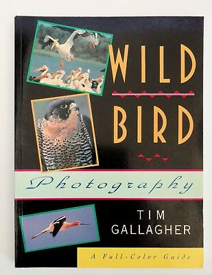 Wild Bird Photography by Tim Gallagher (1994, Paperback) - Very Good Condition