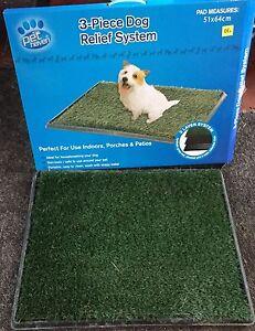 Puppy toilet trainer Noarlunga Downs Morphett Vale Area Preview