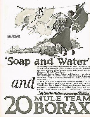 1920s BIG Vintage Borax Washing Powder Laundry Art Print Ad