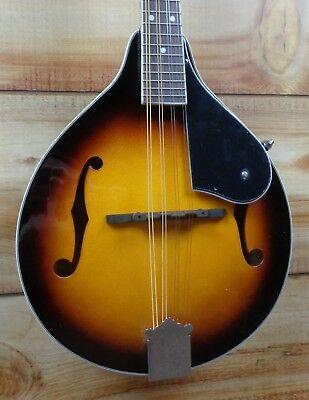 New Washburn M1K A Style Acoustic Mandolin Pack Sunburst