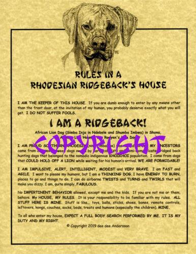 Rules In A Rhodesian Ridgeback