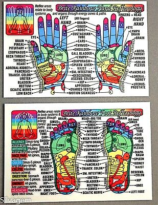 Foot Hand Reflexology Acupressure Code Laminated Wallet Card Chart Pocket Guide  - Foot Reflexology Card