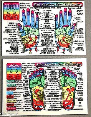 Foot Hand Reflexology Acupressure Code Laminated Wallet Card Chart Pocket Guide