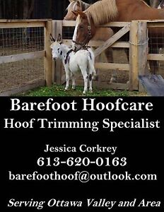 Farrier- barefoot trimming