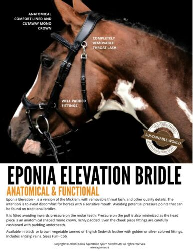 Bridle - Eponia Elevation (anatomic incl reins)