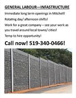 Are you looking for work in Mitchell, ON - CALL TODAY!!