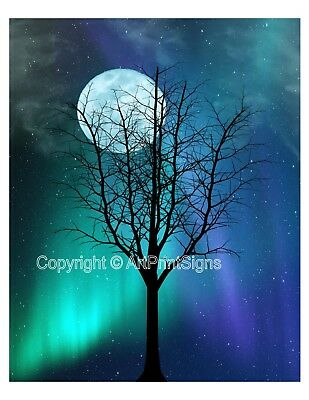 Blue Moon Teal Northern Lights Wall Art Photo Print Tree Stars Sky Home Decor