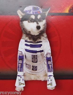 "Disney Star Wars R2-D2 Pet Dog Costume Size Medium 17"" Chest 15"" Neck to Tail"