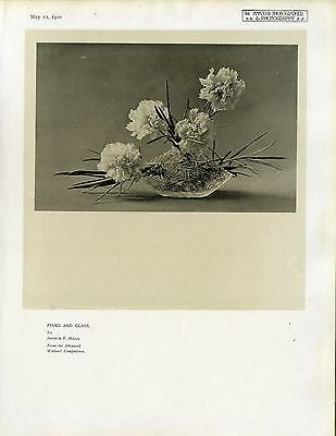 Pinks and Glass by Arthur F. Hills Historischer Kunst- Photodruck von 1920