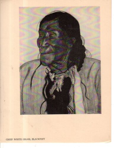 1928 Survey Graphic print - Chief White Grass, Blackfeet   very rare