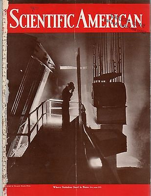 1934 Scientific American November - New dinosaur remains found; Television fails