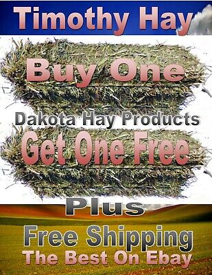 Buy 1 Get 1 Free  Timothy Hay 3 lb Bales for RABBITS, GUINEA PIG