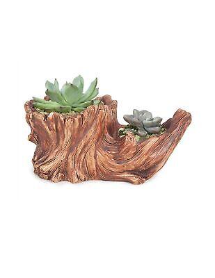 Dahlia Driftwood Stump Log Concrete Planter/Succulent Pot/Pl