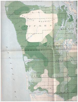 1898 color map Western Washington Timber Density 16x20