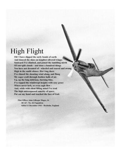HIGH FLIGHT Aviator