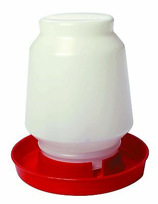 Little Giant Complete Poultry Fountain Gravity-feed Waterer 9 X 10.25 1 Gallon
