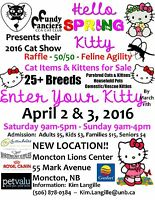 Spring CAT SHOW coming to Moncton April 2/3