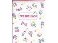 Sanrio Hello Kitty Fresh Punch Folder Portfolio Side Open Pink Stripes