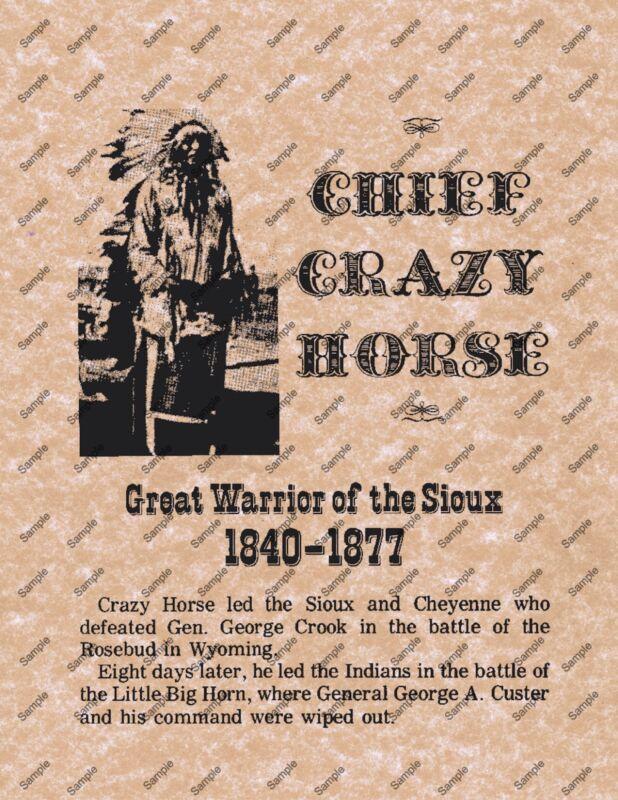 CHIEF CRAZY HORSE SIOUX OLD WEST POSTER WESTERN 101