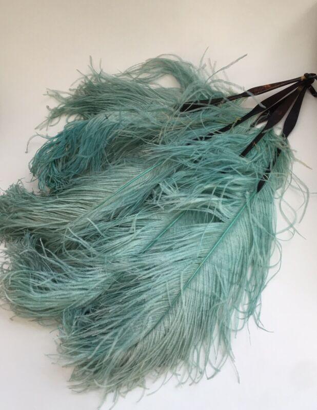 Antique ostrich feather fan flapper antique art deco LONG aqua tortoise shell