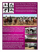 Horse riding lessons and day camps and therapeautic riding