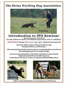 Introduction to IPO Seminar